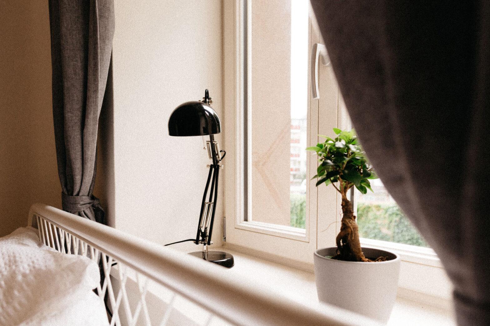 pflanzen und eine schöne schwarze alte Schreibtischlampe auf dem Fensterbrett im hostel multitude